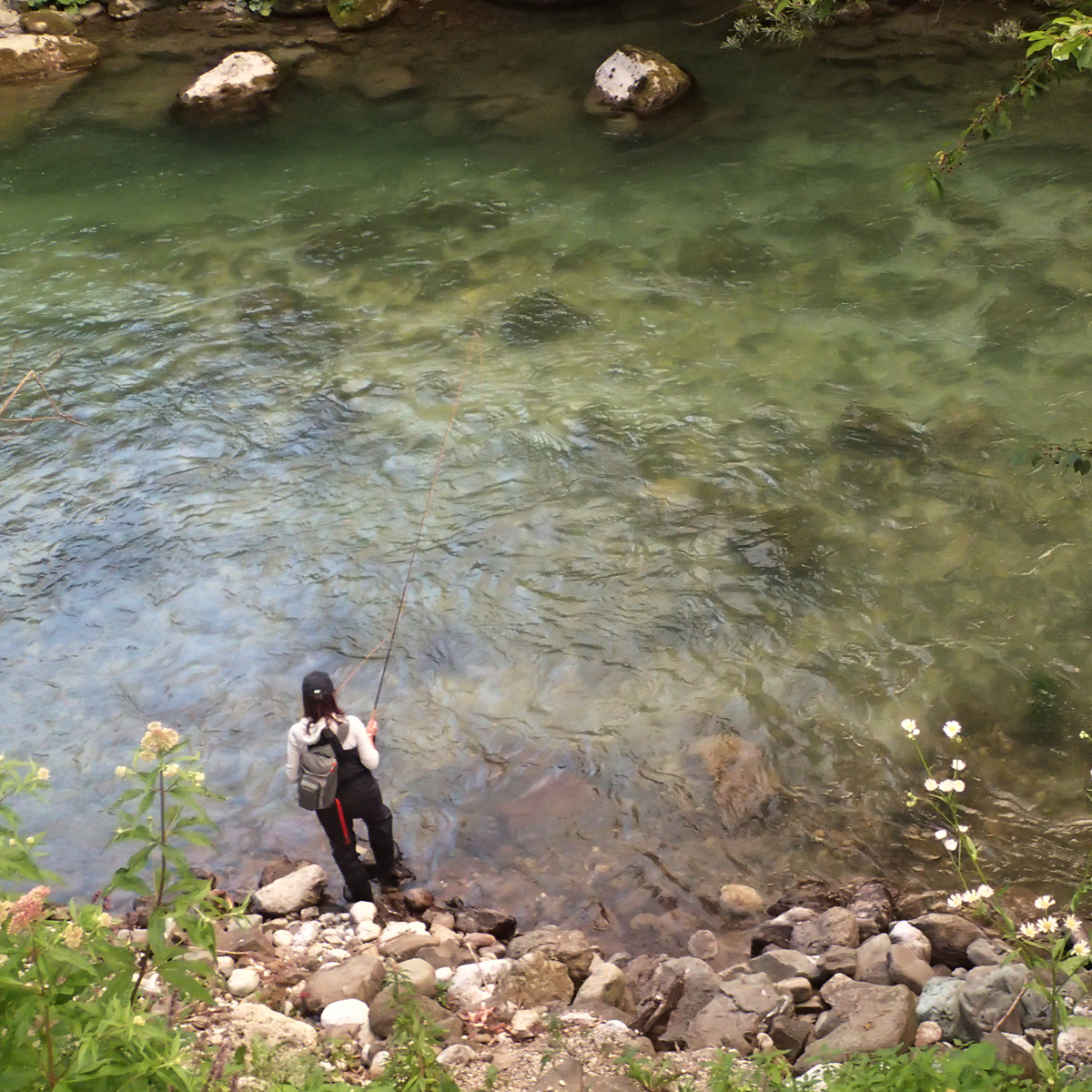 Fliegenfischen an tiefer Rinne in Savinja