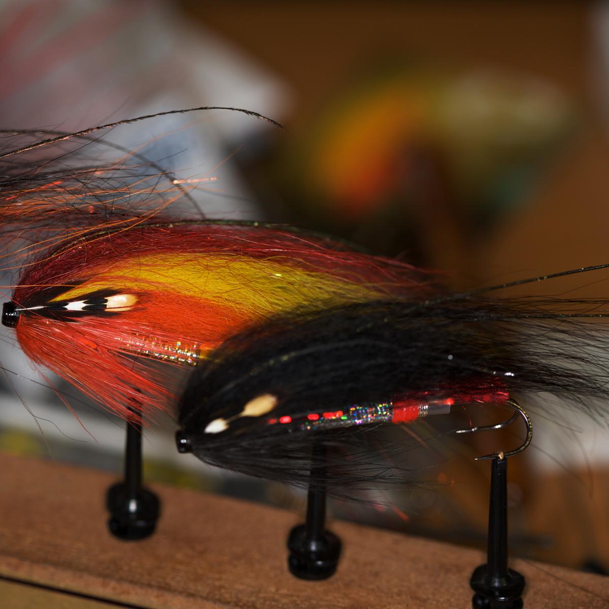 Lachs-Tubenfliegen