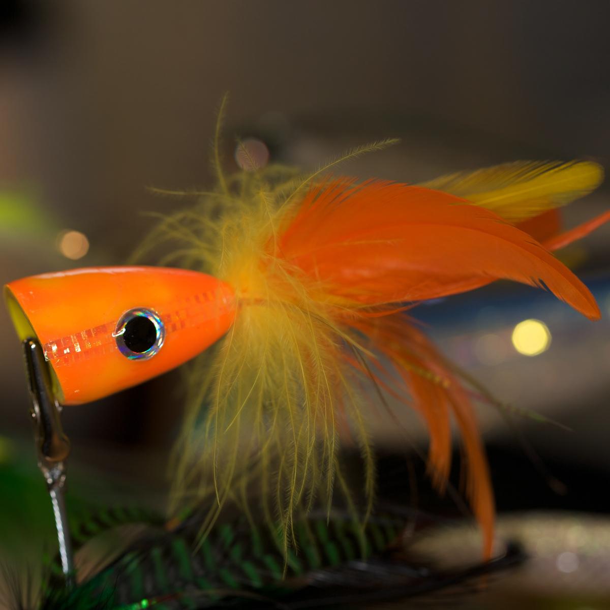 Popper zum Fliegenfischen in Orange