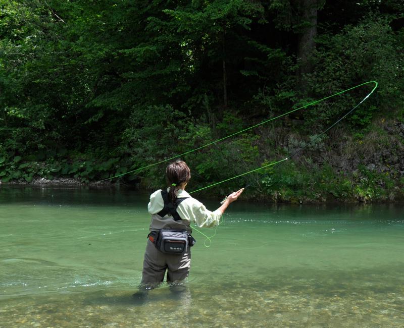 Forelle im Drill beim Fliegenfischen
