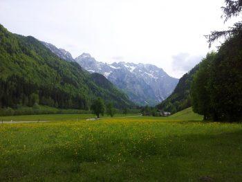 Das Tal der Savinja in Slowenien