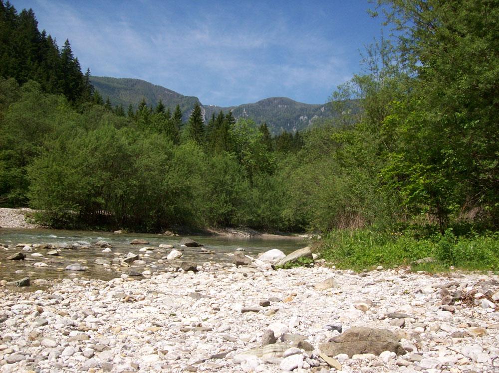 Schöne Landschaft am Fluss in Slowenien