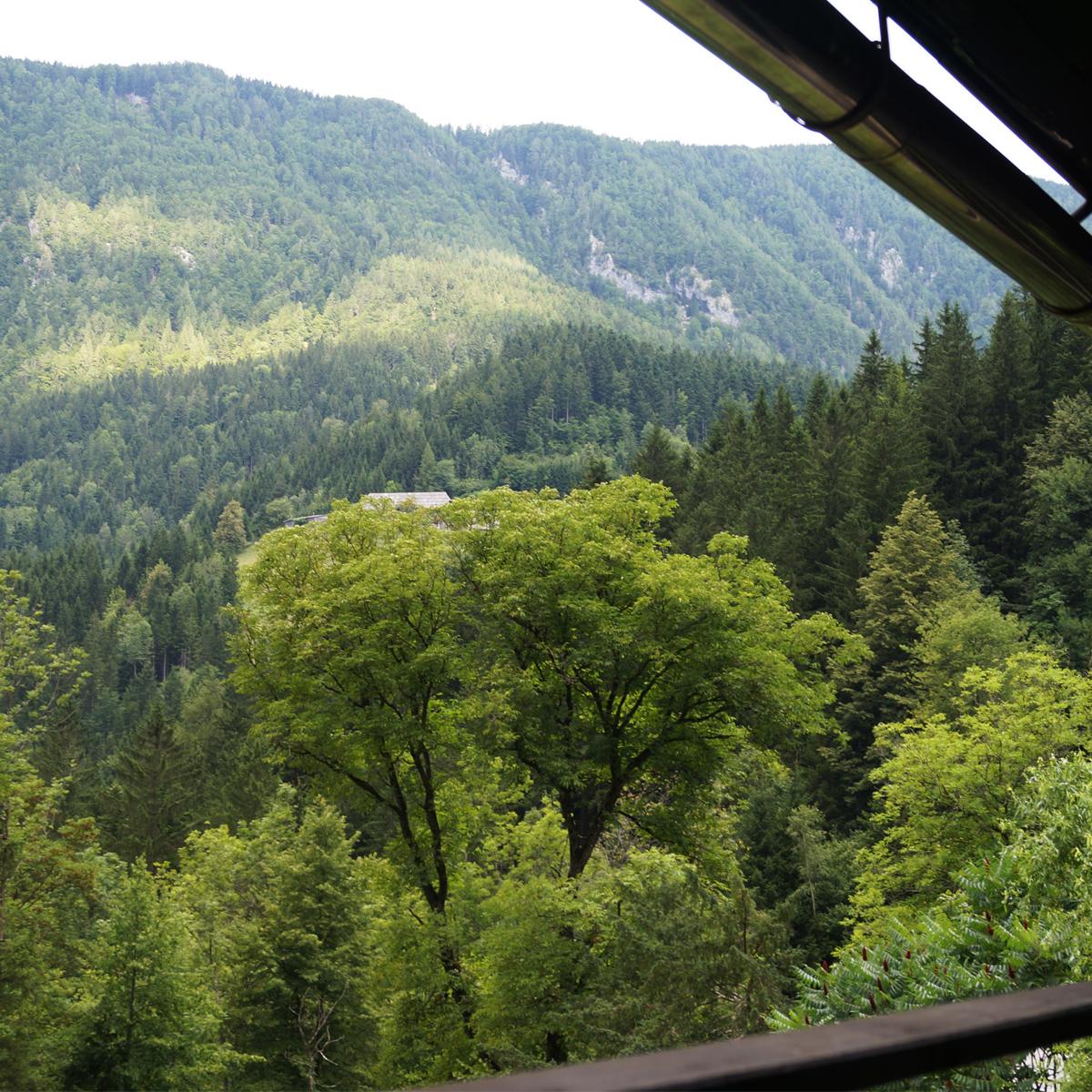 Blick von Lodge in Slowenien
