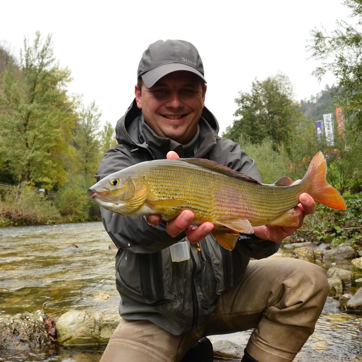 Äschen fischen in Slowenien