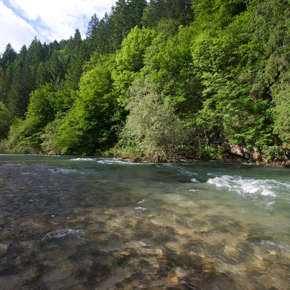 Fluss Savinja in Slowenien