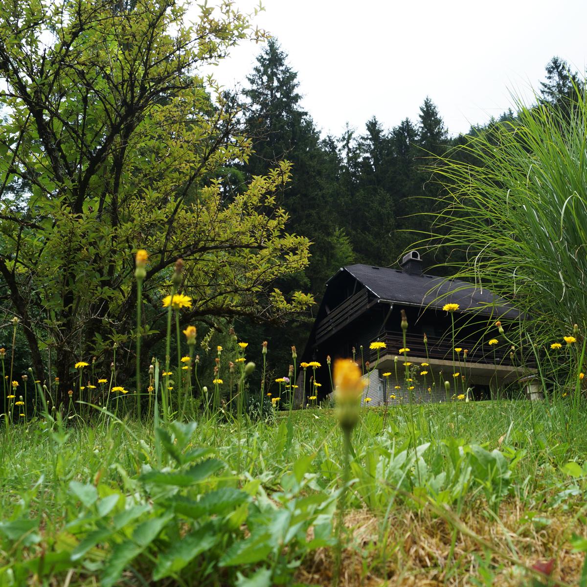 Mirjana's Lodge an der Savinja
