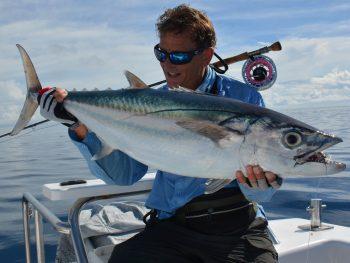 Fliegenfischen auf Thunfisch