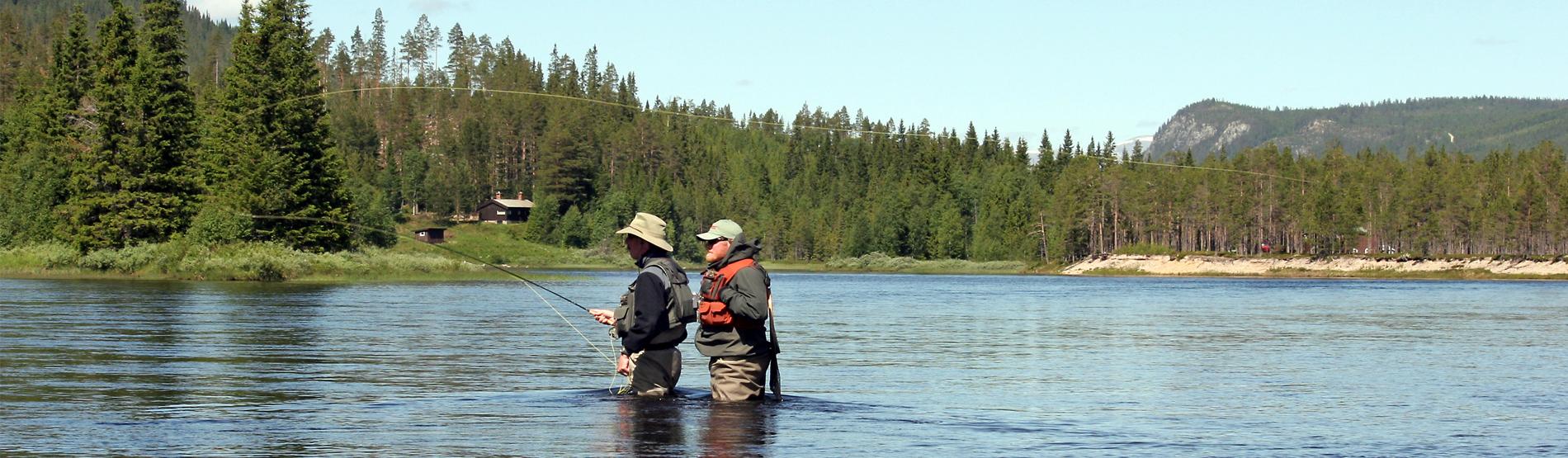 Fliegenfischen lernen mit Rudy van Duijnhoven
