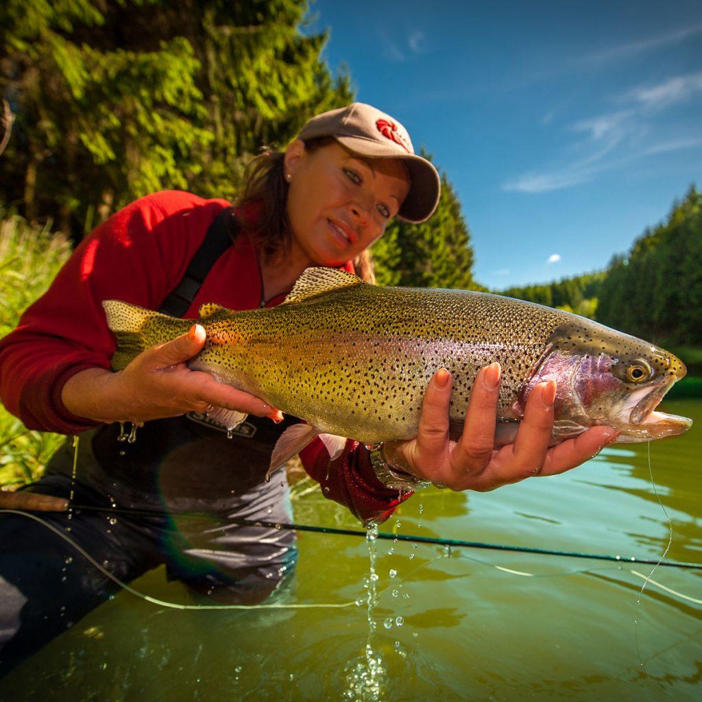 Fliegenfischen am See auf Regenbogenforelle