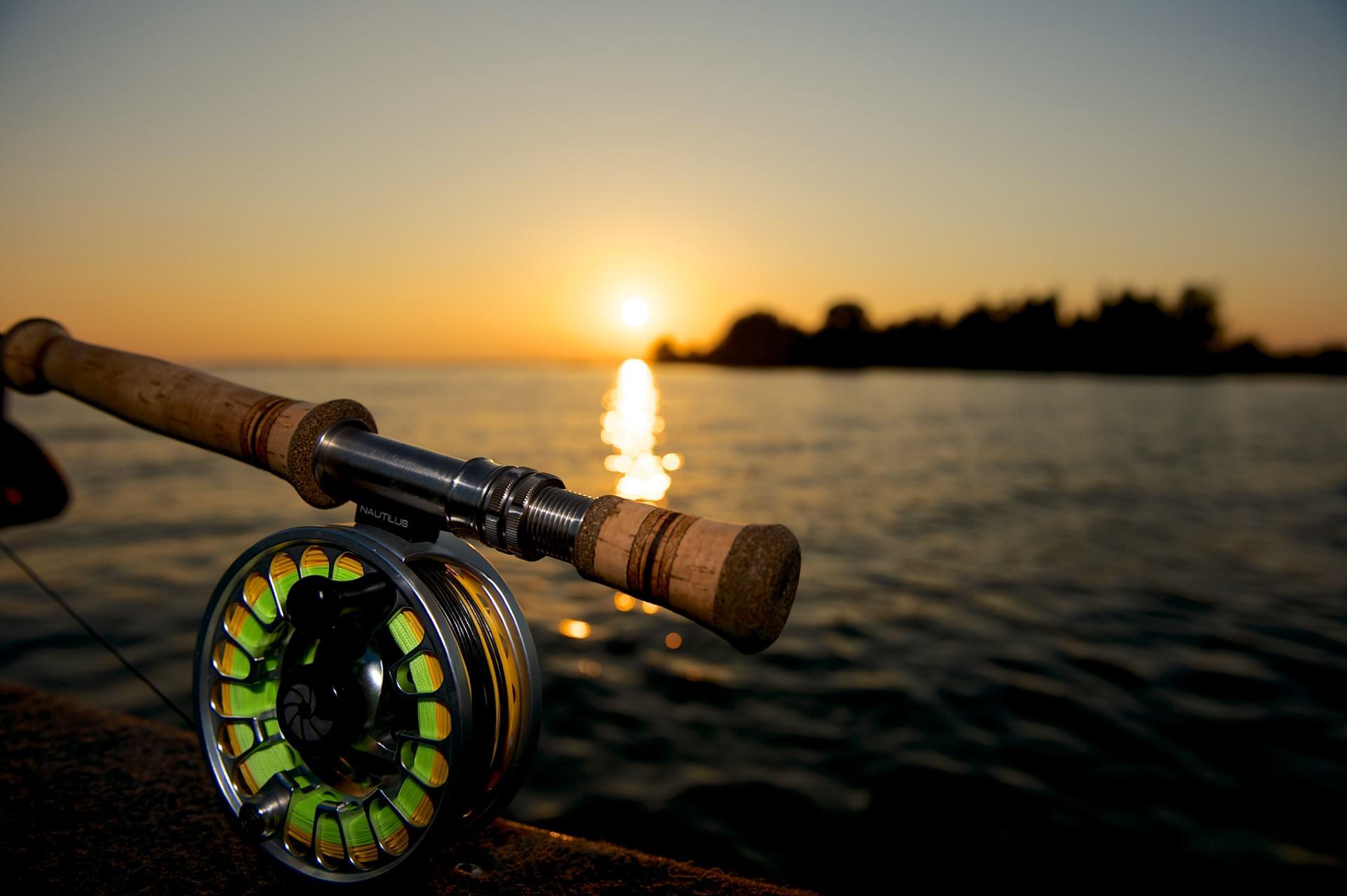 Rute und Rolle für Fliegenfischen auf Hecht